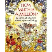 How Much is A Million? by David M. Schwartz