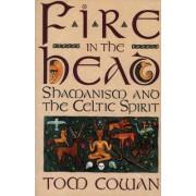 Fire in the Head by Tom Cowan