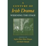 A Century of Irish Drama by Stephen Watt