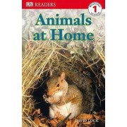 Animals at Home by David Lock