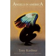 Angels in America: A Gay Fantasia on National Themes (20th Anniversary Edition) by Professor Tony Kushner