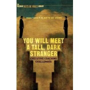 You Will Meet a Tall, Dark Stranger 2016 by Manfred F. R. Kets de Vries