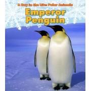 Emperor Penguin by Katie Marsico