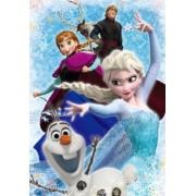 Frozen El Reino del Hielo - Disney Puzzle 300 piezas D-300-265 (Japan Import)
