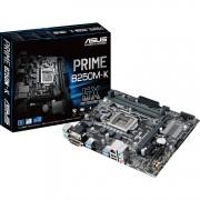 PRIME B250M-K