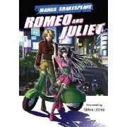 Romeo and Juliet by William Appignanesi Shakespeare