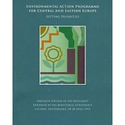 Environmental Action Programme for Central and Eastern Europe by World Bank