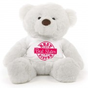 2 feet big white fur face teddy bear wearing special Best Sister T-shirt
