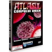Discovery - Atlasul corpului uman:Sistemul imunitar/Ceasul biologic (DVD)