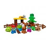 10582 Forest Animals