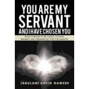 You Are My Servant and I Have Chosen You: What It Means to Be Called, Chosen, Prepared and Ordained by God for Ministry