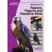 BSAVA Manual of Raptors, Pigeons and Passerine Birds by John Chitty