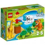 Lego duplo town cuccioli 10801