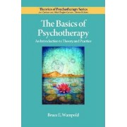 The Basics of Psychotherapy by Bruce E. Wampold