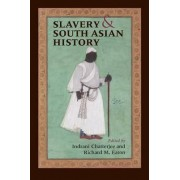 Slavery and South Asian History by Indrani Chatterjee