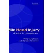 Mild Head Injury by Philip Wrightson