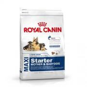 ROYAL CANIN MAXI STARTER M&B 15kg