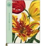 Remarkable Plants: Five Year Journal by Kew Royal Botanic Gardens
