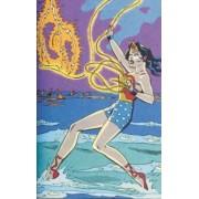 Wonder Woman Amazon Princess Archives Volume 1 HC by Robert Kanigher