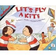 Let's Fly a Kite by Stuart J Murphy Murphy