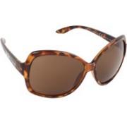 Lee Cooper LC9081FVB DA Over-sized Sunglasses(Brown)