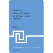 Quantum Electrodynamics of Strong Fields by Greiner W. Hold