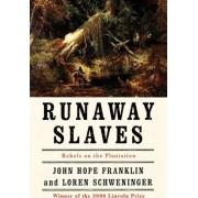Runaway Slaves by John Hope Franklin