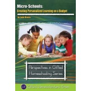 Micro-Schools: Creating Personalized Learning on a Budget