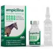 AMPICILINA VETERINÁRIA INJETÁVEL 2G - 10ml