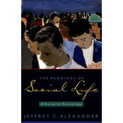 The Meanings of Social Life by Jeffrey C. Alexander