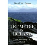 Let Me Die in Ireland by Publishing Scroll Company