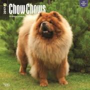 2017 kalender met Chow Chow honden