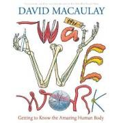 Way We Work by David Macaulay