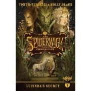 Lucinda's Secret by Tony DiTerlizzi