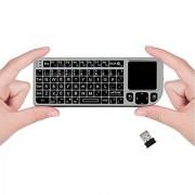 FAVI FE01 2.4GHz Wireless USB Mini Keyboard w Mouse Touchpad Laser Pointer - US Version (Includes Warranty) - Silver (FE01-SL)