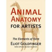 Animal Anatomy for Artists by Artist/Anatomist Instructor Eliot Goldfinger