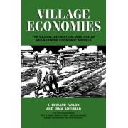 Village Economies by J. Edward Taylor
