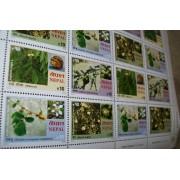 Nepal Postage Stamp Collectors Block Fruit Series The Fruits Of Nepal / 2005 Nepal Post Stamp Block Issue