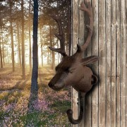 Wall Hook Stag