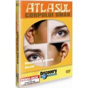 Discovery - Atlasul corpului uman - Realitatea vizuala.Auzul (DVD)