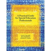 A Practical Guide for Special Education Professionals by Lisa Churchill