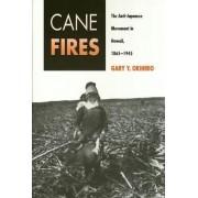 Cane Fires by Gary Y. Okihiro