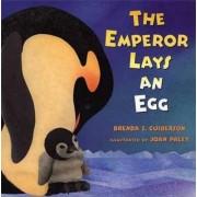 The Emperor Lays an Egg by Brenda Z Guiberson