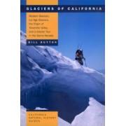 Glaciers of California by Bill Guyton