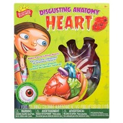 Scientific Explorer Disgusting Anatomy of the Heart Science Kit by Scientific Explorer