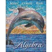 Beginning Algebra by Molly O'Neill