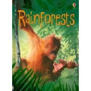 Rainforests by Lucy Beckett-Bowman