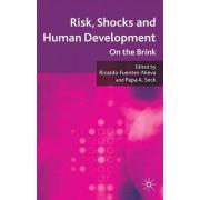 Risk, Shocks, and Human Development by Ricardo Fuentes-Nieva