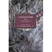 Cataclysm 1914: the First World War and the Making of Modern World Politics by Alexander Anievas