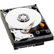"HDD Server Fujitsu S26361-F3671-L100 1TB @7200rpm, SATA III, 3.5"", compatibil cu Primergy TX100 S3p, TX120 S3p, TX1310 M1, RX1320 M1"